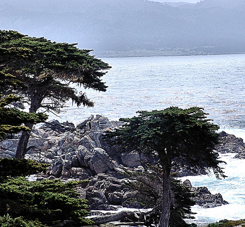 Monterey, Calfornia Photo: Carodean Road Designs, used under Creative Commons License (By 2.0)