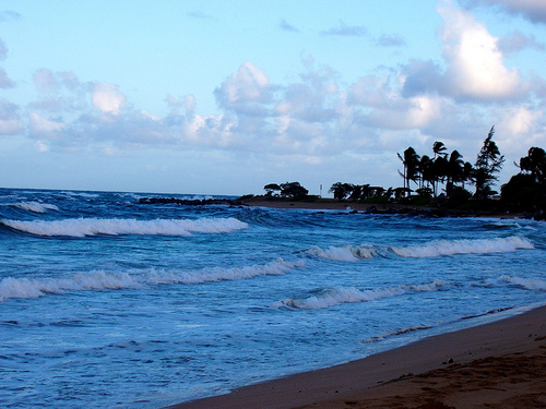 Beach in Kauai. Photo: OhellMichlle, used under Creative Commons License (By 2.0)