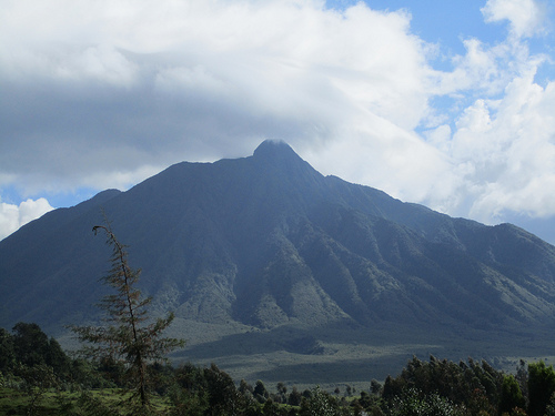 Volcanoes National Park, Rwanda -  Photo: johncooke, used under Creative Commons License (By 2.0)