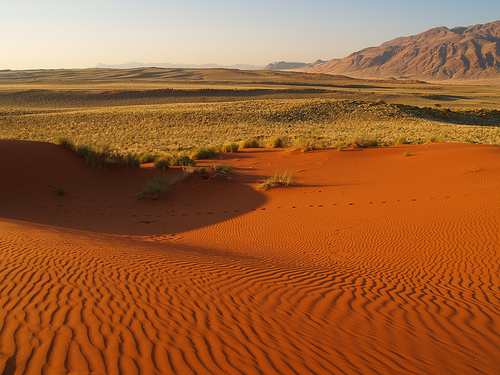 Namibia -  Photo: Rui Ornelas, used under Creative Commons License (By 2.0)