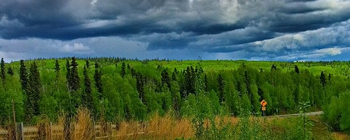 Green Alaska. Photo: kla4067, used under Creative Commons License (By 2.0)