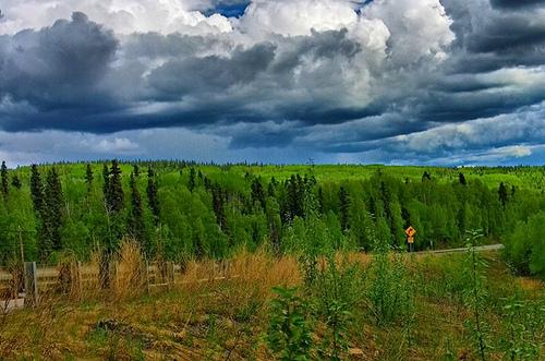 Green Alaska. Photo: kla4067, used under Creative Commons License (By 2.0)