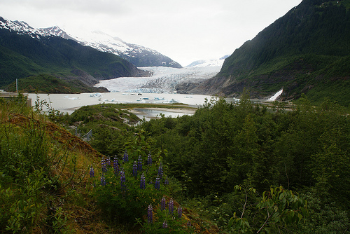 Mendenhall Glacier, Juneau, Alaska - . Photo: dbaron, used under Creative Commons License (By 2.0)