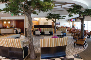American Airlines Admirals Club - SFO. Image from AA.COM