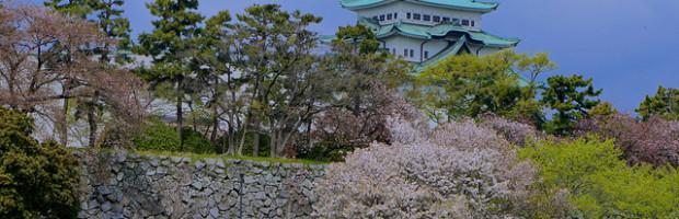 Sakura Festival, Nagoya, Japan. Photo: Manish Prabhune, used under Creative Commons License (By 2.0)
