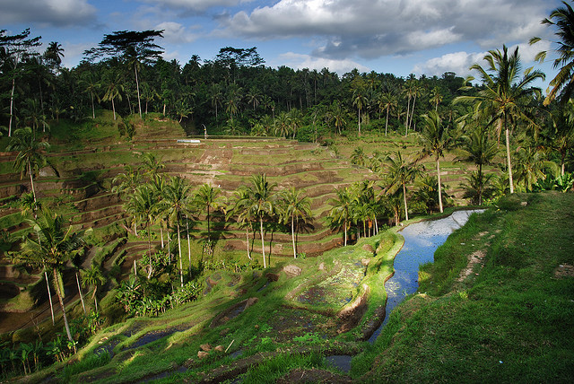 Delta – $617: San Francisco – Bali, Indonesia. Roundtrip, including all Taxes