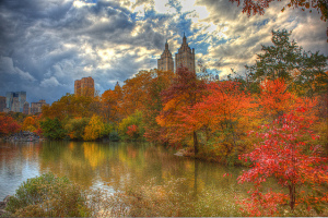 Fall Foliage, Central Park, New York - Photo: Anthony Quintano via Flickr, used under Creative Commons License (By 2.0)