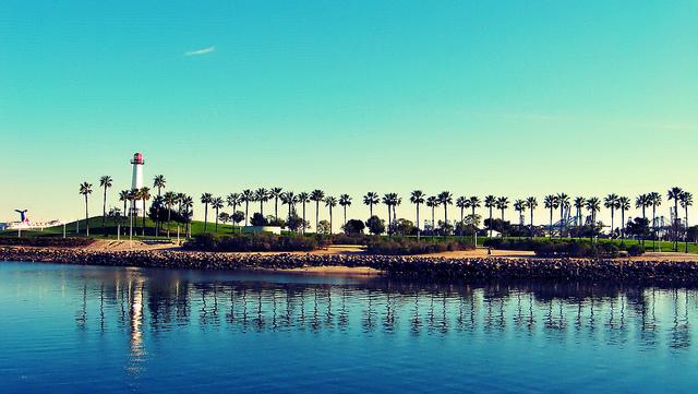 United Rentals North Long Beach