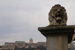 Buda Castle and Chain Bridge Lion, Budapest, Hungary - Photo: (c) 2016 -Jonathan of Two if by Air