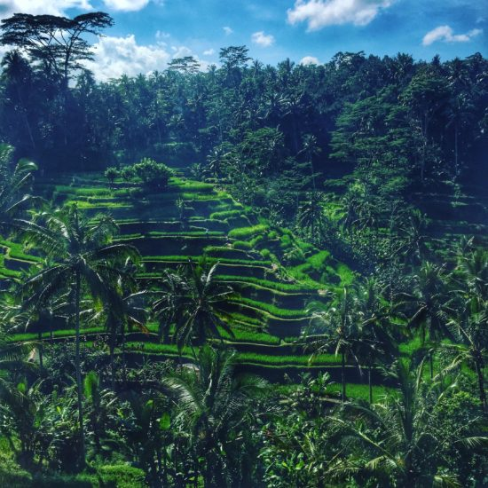 Tegalalang Rice Terraces, Bali, Indonesia - Photo: (C) Kiran Iqbal of WanderlustCrave.com