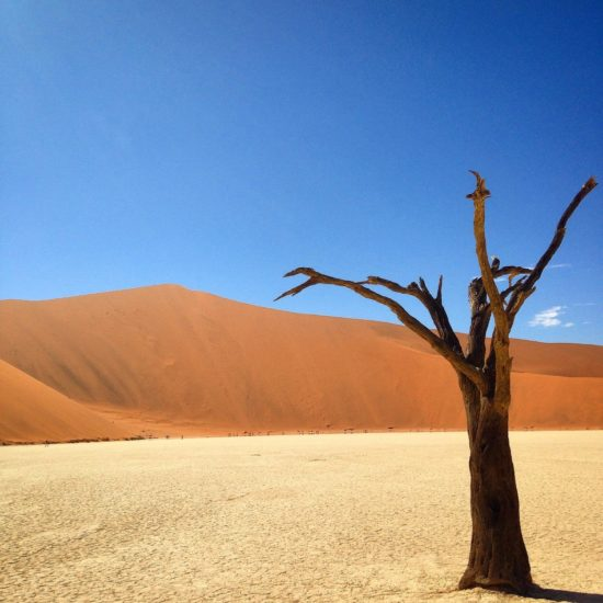 DeadVlei, Namibia- Photo: (c) 2016 - Jennifer Wong of From Mississippi with Love