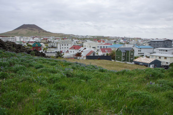 Practical Travel Tips: The Westman Islands, Iceland
