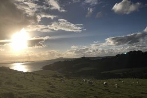 Sunset, Waiheke Island, New Zealand - Photo: (c) 2017 - Neema Okal