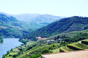 Duoro Valley, Portugal - Photo: (c) 2017 - Neema Okal of Adventures of An African Dutchess