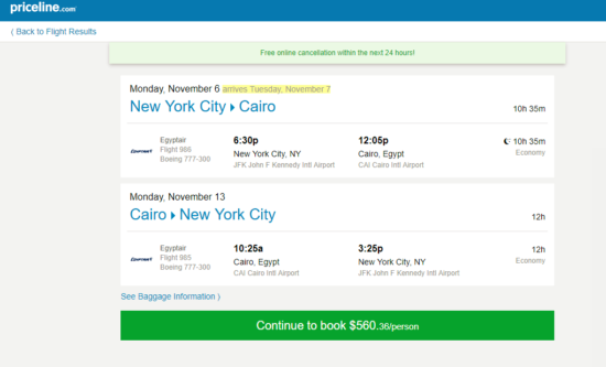 The Flight Deal Egyptair 561 New York Cairo Egypt