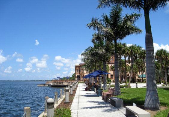 American: Portland – Sarasota, Florida (and vice versa). $242. Roundtrip, including all Taxes
