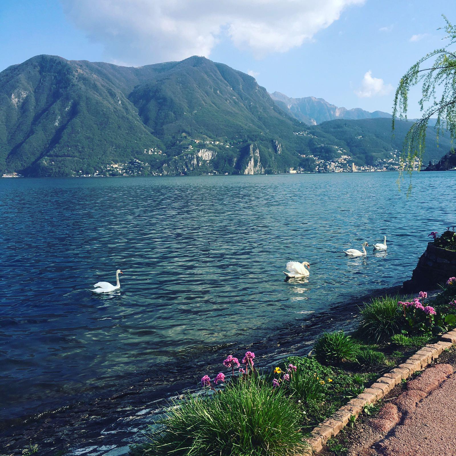 The Flight Deal Practical Travel Tips Lugano Switzerland