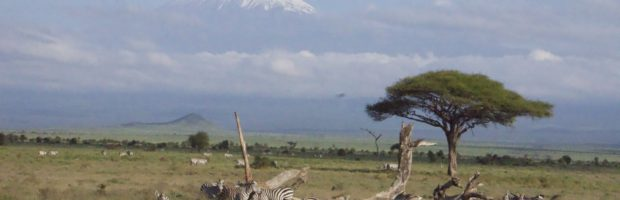 View of Mt. Kilimanjaro, Tanzania- Photo: (c) 2018 - Neema Okal of Adventures of An African Dutchess