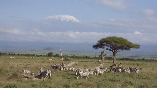 View of Mt. Kilimanjaro, Tanzania- Photo: (c) 2018 - Neema Okal of Adventures of An African Dutchess